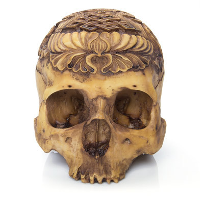 Tribal Skull, Frontal