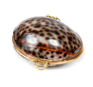 Shell Coin Purse - Tiger Cowrie