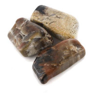 Small Tumbled Petrified Wood - Thumbnail