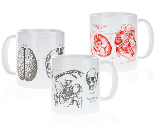 Skeleton, Brain, Heart Mugs Thumbnail