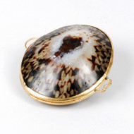 Shell Coin purse Limpet thumbnail
