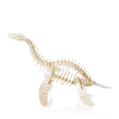 Tiny Plesiosaurus - Thumbnail