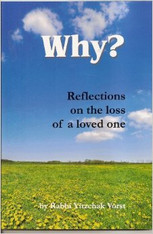 Why? Reflections on the Loss