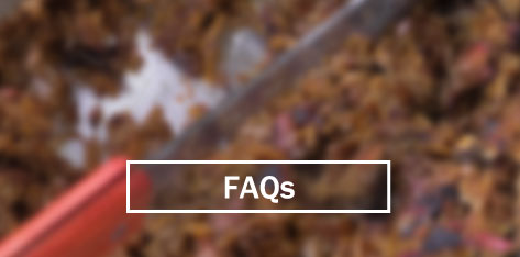 faqs-quad-border.jpg
