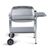 PK Classic Charcoal Grill and a Smoker Deals
