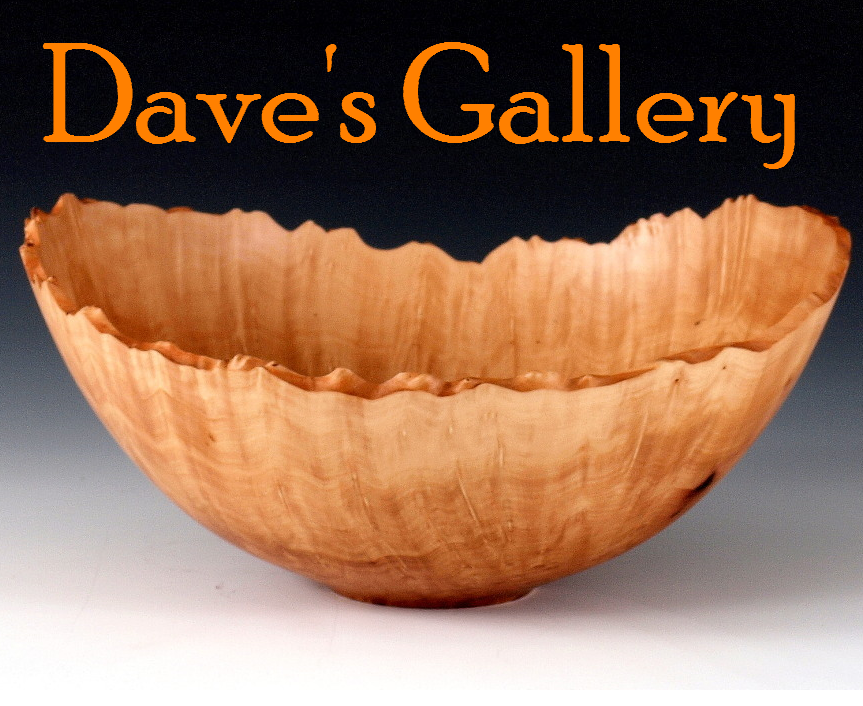 Dave's Gallary