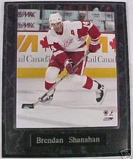 Brendan Shanahan Detroit Red Wings 10.5x13 Plaque