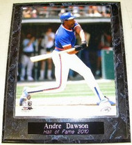 Andre Dawson Chicago Cubs Hall of Fame 2010 10.5x13 Plaque
