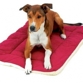 Beds For Dog Crates