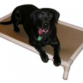 Chew-Resistant Dog Beds