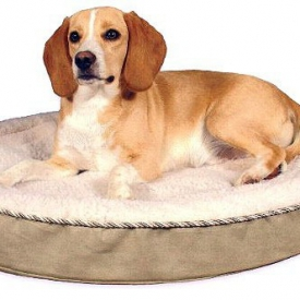 Gel-Pedic Dog Beds