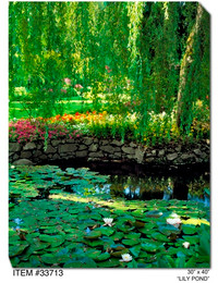 Lily Pond Canvas Wall Art