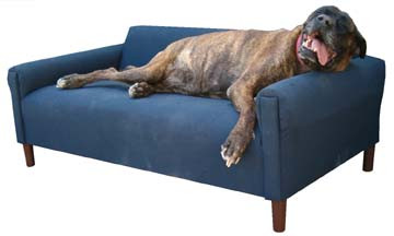 the modern dog sofa bed - large to xxl | pets