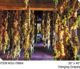 Hanging Grapes Canvas Wall Art