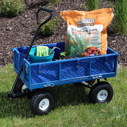 Blue Cart and Liner Outdoor