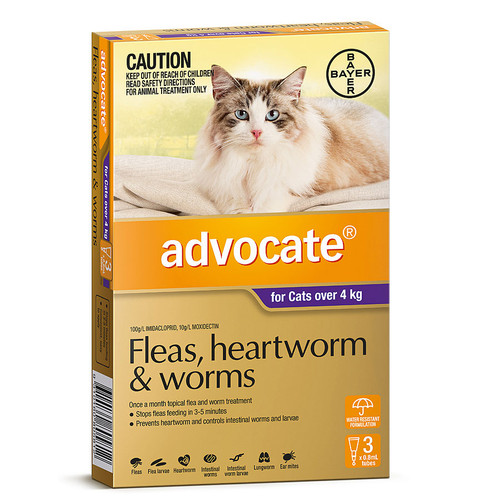Advocate for Large Cats over 4 kg - 3 Pack