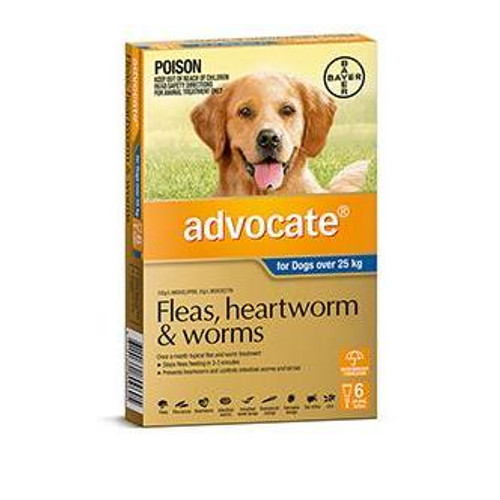 Advocate for Dogs Over 25 kg - 6 Pack