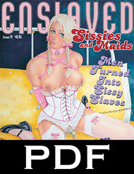 Enslaved Sissies and Maids 14 - PDF Download