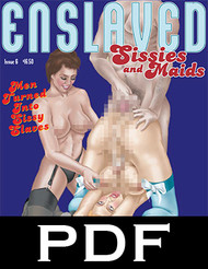 Enslaved Sissies and Maids 6 - PDF Download