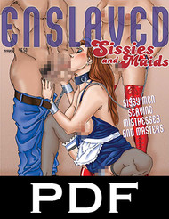 Enslaved Sissies and Maids 3 - PDF Download