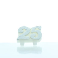 CANDLE 25th ANNIVERSARY