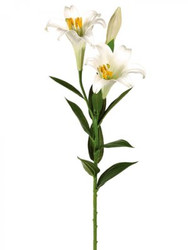 EASTER LILYx3 WHITE 31""