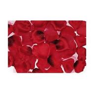 PETALS ROSE RED x300