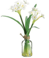 "NARCISSUS IN GLASS VASE 11"" WH"