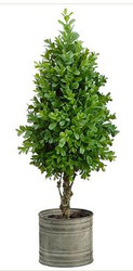 "TOPIARY BOXWOOD 22"" IN TIN GREEN"