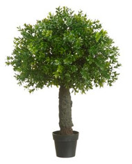 "BOXWOOD BALL TOPIARY 22"" GREEN"