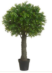 "BOXWOOD BALL TOPIARY 27.5"" GREEN"