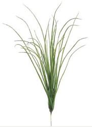 """GRASS BUSH 20"""""""