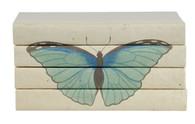 Blue butterfly - Summer Azure - 4 vol. stack