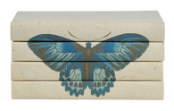 Butterfly series - blue monarch