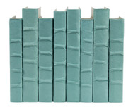Robin's Egg Blue parchment bound books - priced by the book