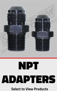 npt1.jpg