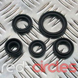 125cc PITBIKE / ATV OIL SEAL SET