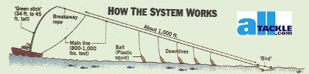 abaco-greenstick-diagram.jpg