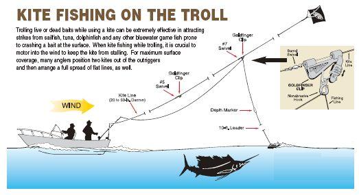 aftco-kite-fishing-trolling.jpg