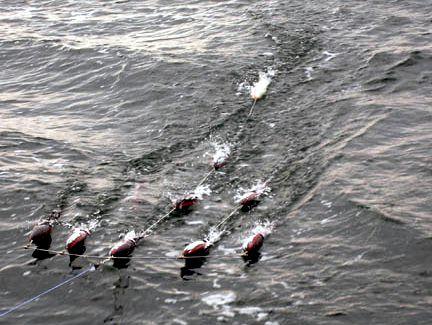 Carlson spreader bars teasers carslon tuna bars carlson for Spreader bar fishing