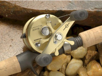 Shimano Calcutta B Reel CT201B