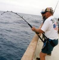 Smittys Spyder Harness Ladies 36 inch -44 inch