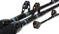 Black Bart Bluewater Pro Standup 30# W/T Roller Rod BR30ER