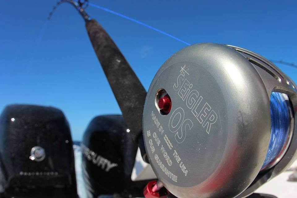 Seigler os reel the hull truth boating and fishing forum for Seigler fishing reels