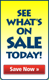 See What's On Sale From Dinovite!