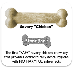 savory-chicken.png