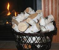 Pieces of White Birch Logs