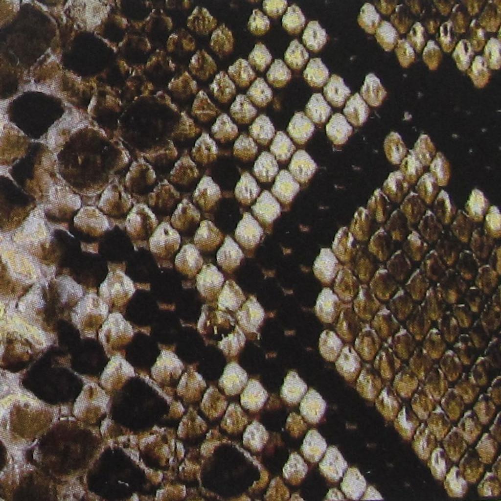 Snake Skin Print Straps Swatch
