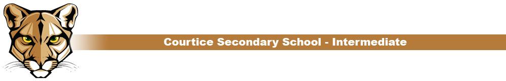 css-intermediate-category-header.jpg