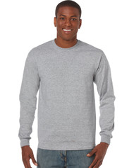 Peel DSB  Gildan 5400 Heavyweight Cotton Adult Long-Sleeve T-Shirt  (S-3XL) - Grey